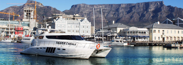 Boat Cruise Cape Town