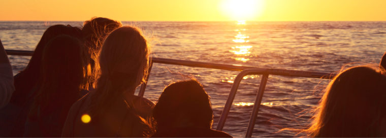 Sunset Cruises Cape Town