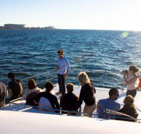 Cape Cruises