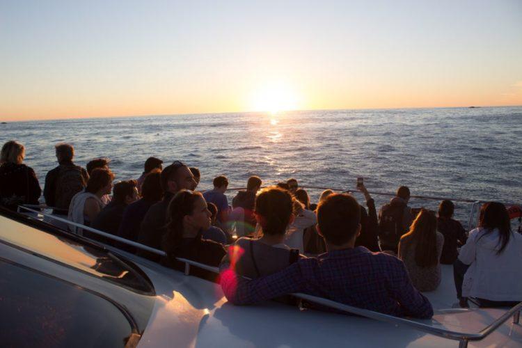 Sunset Cruise Tigger 2