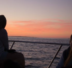 Sunset Cruise Cape Town