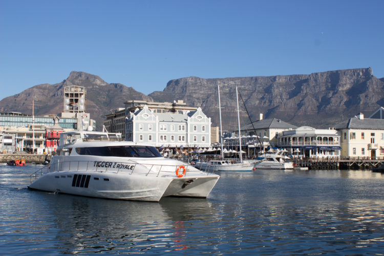 Boat Cruises Cape Town